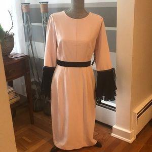 New 💖NY&C ROSE AND BLACK DRESS